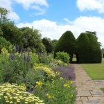 Herbaceous Border with Yew Topiary